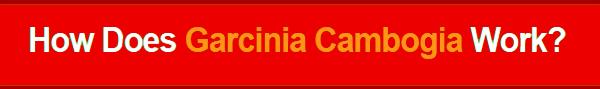 Pureline Garcinia Cambogia Diet