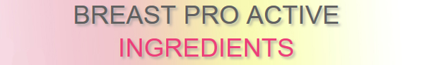Breast Pro Active Supplement