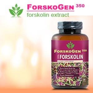 forskogen-350