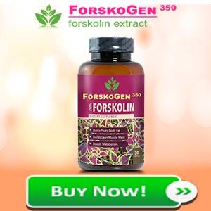 forskogen 350 review