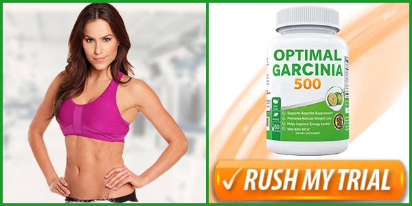 optimal-garcinia-500-ingredients